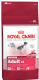 Royal Canin Medium Adult 25 Dog Food 15kg Special Offer £49 or 2 for £95